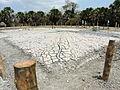 Mud Volcano Baratang Island, Andaman Island, India,.JPG