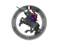 Multinational Specialized Unit - Logo - San Giorgio.png