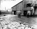 Myers Packing Co, Seattle, Washington, 1895 (INDOCC 159).jpg