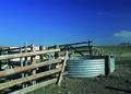 NRCSMT01077 - Montana (5001)(NRCS Photo Gallery).tif