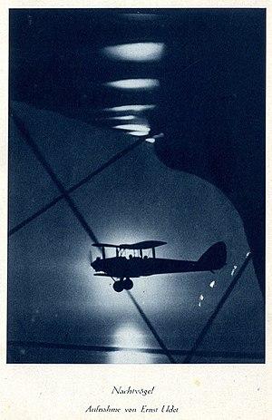 Ernst Udet - A picture taken by Ernst Udet, c. 1930