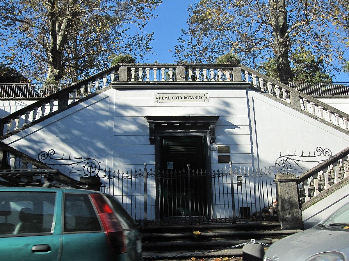Orto botanico di napoli wikipedia for Una storia ospita vicino a me