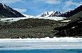 Nararsuk Glacier 1995-06-13.jpg