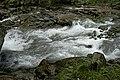 Natur in der Rabischschlucht 20190819 008.jpg