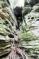 Naturpark Südeifel (Eifel); Teufelsschlucht 21.jpg