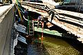 Navy at I-35 Bridge Collapse DVIDS53324.jpg
