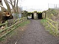 New Whittington - Footpath under the Railway - geograph.org.uk - 1198512.jpg