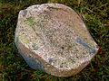 Newburgh, saddle quern - geograph.org.uk - 1629298.jpg