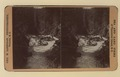 Niahara Canon Falls on the Esquimalt and Nanaimo Railway, Vancouver Island (for stereoscope) (HS85-10-12146) original.tif