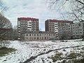 Novoselye.jpg