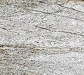 Old cement in yard - detail 2.jpg