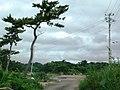 Omotehamani Hanabuchihama, Shichigahama-machi, Miyagi-gun, Miyagi-ken 985-0803, Japan - panoramio (1).jpg