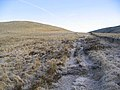 On a track heading for Pike Fell - geograph.org.uk - 328143.jpg