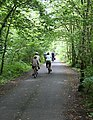 On the Cycleway - geograph.org.uk - 883090.jpg