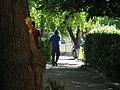 On the sidewalk - panoramio.jpg