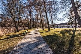 Pörtschach Hans-Pruscha-Weg Parkbäume und Schilfgürtel 16032018 2696.jpg