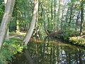 P9231438 Oelerbeek in september.JPG