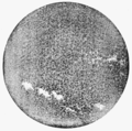 PSM V65 D018 The sun showing the calcium flocculi august 1903.png