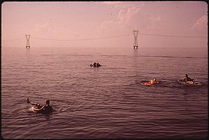 PUBLIC SWIMMING AREA ON LAKE PONTCHARTRAIN - N...