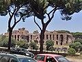 Palatino da via del Circo Massimo.jpg