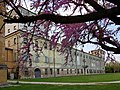 Palazzo di San Giacomo in primavera.jpg