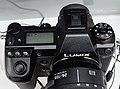 Panasonic Lumix DC-S1 27 Mar 2019d.jpg
