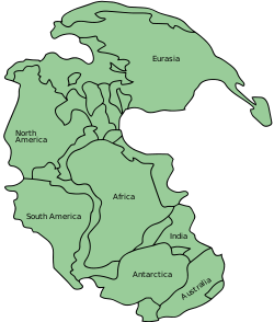 An irregular green shape against a blue background represents Pangaea.