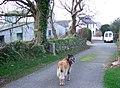 Parcynole Fach - geograph.org.uk - 305692.jpg