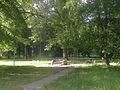 Park in Sujda.jpg