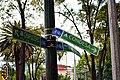 Parque España - Ciudad de México - 17 - Nomenclatura para ciclistas.jpg