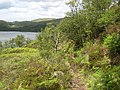 Path above Loch Moidart - geograph.org.uk - 1349265.jpg