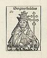 Paus Sergius II Sergius secundus (titel op object) Liber Chronicarum (serietitel), RP-P-2016-49-63-5.jpg