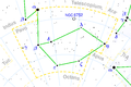 Pavo constellation map.png