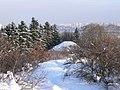 Pechers'kyi district, Kiev, Ukraine - panoramio (129).jpg