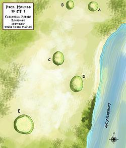 Peck Mounds 16 CT 1 HRoe 2011.jpg