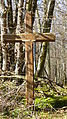 Perreux--parc de montigny près pinabeaux.JPG
