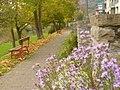 Pfad Beim Sauerstaden, Bollendorf (Path by Sauerstaden, Bollendorf) - geo.hlipp.de - 14385.jpg