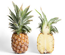 Pineapple and cross section.jpg