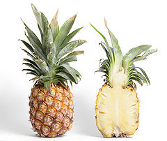 https://upload.wikimedia.org/wikipedia/commons/thumb/c/cb/Pineapple_and_cross_section.jpg/240px-Pineapple_and_cross_section.jpg