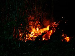 Piton Fournaise eruption 08 2004 01.jpg