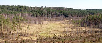 Piusa valley.jpg