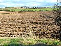 Ploughed field, Cookshold Lane, Sherburn - geograph.org.uk - 150394.jpg
