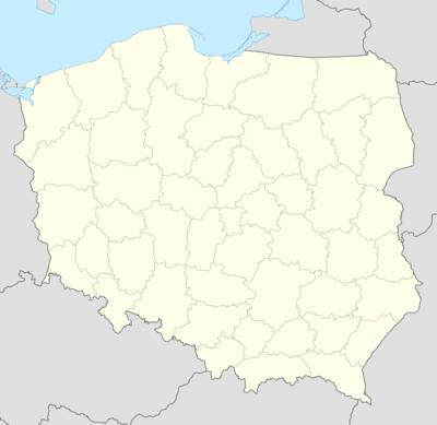 Mapa konturowa Polski w latach 1993–1998