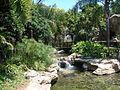 Polynesian view.jpg