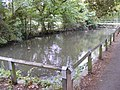 Pond at the Recreation Ground - geograph.org.uk - 1499616.jpg