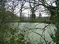 Pond by Willetts Lane - geograph.org.uk - 862001.jpg