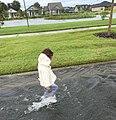 Post-Hurricane Irma Flooding (37242412336).jpg