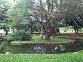 Praça La Hire Guerra.JPG