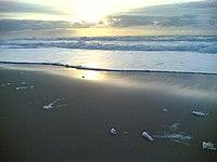 Espuma branca na praia grande.
