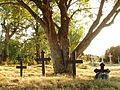 Prangli kalmistu 02.JPG